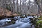 Nacimiento Rio Duero