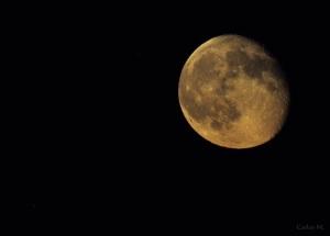 Luna de verano