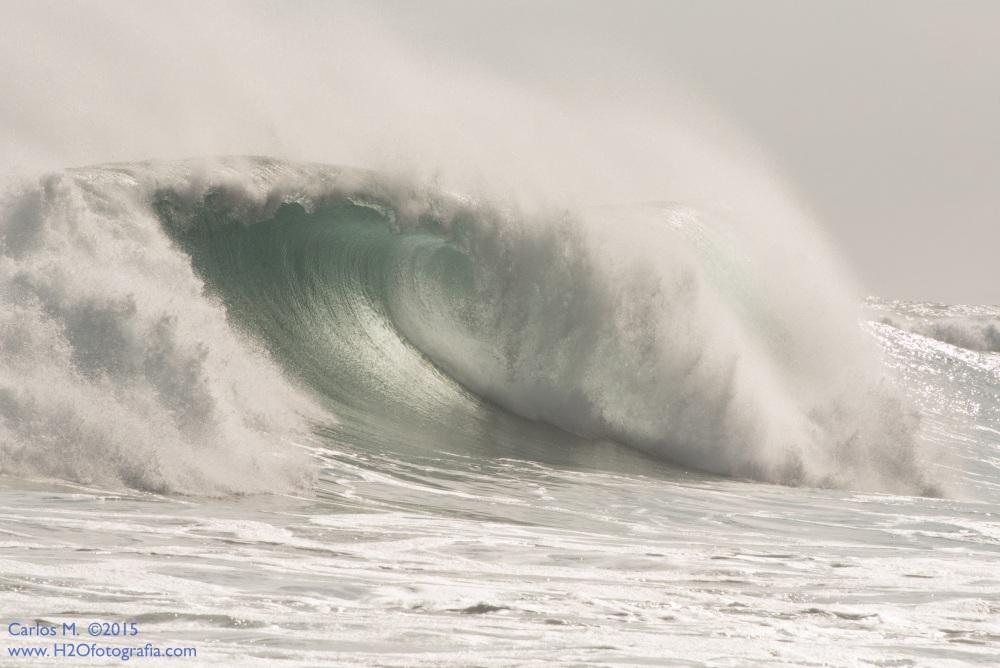 Surf: nuevos episodios (1/6)